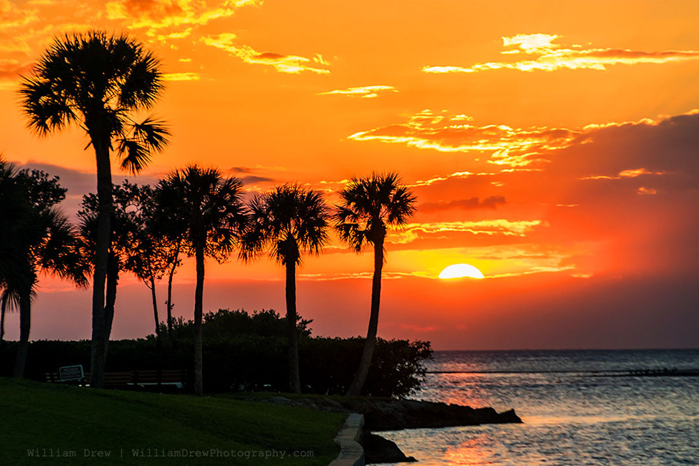 Tropical Sunset 2 - Sunset Photographs | William Drew Photography