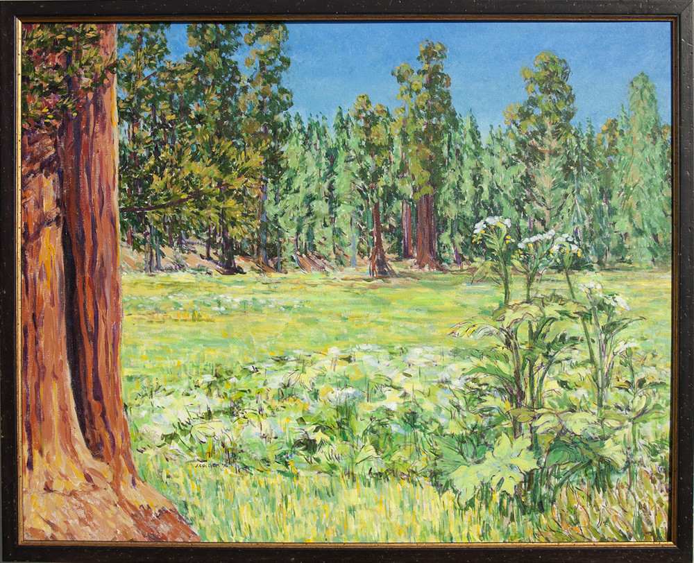 Round Meadow in Bloom, Giant Trees Trail, Sequoia National Park