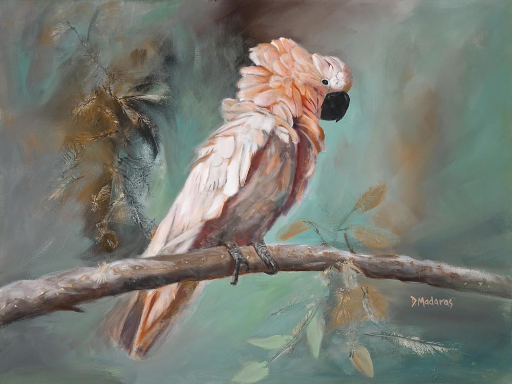 Maui | Southwest Art Gallery Tucson | Diana Madaras