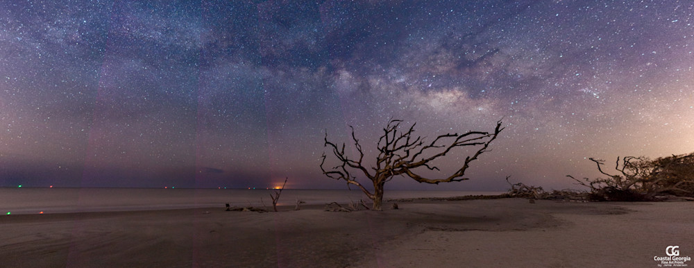 Driftwood Beach at Night Panorama
