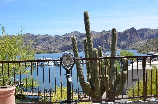 Southwest Art Gallery Tucson | Saguaro Lake Ranch 17