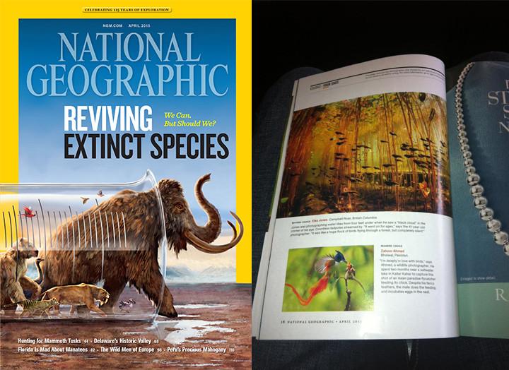 National Geographic magazine with Eiko Jones image of tadpoles