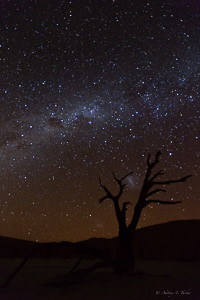 Dead Vlei Milky Way