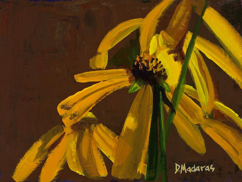 Dance of the Flowers | Southwest Art Gallery Tuson | Diana Madaras