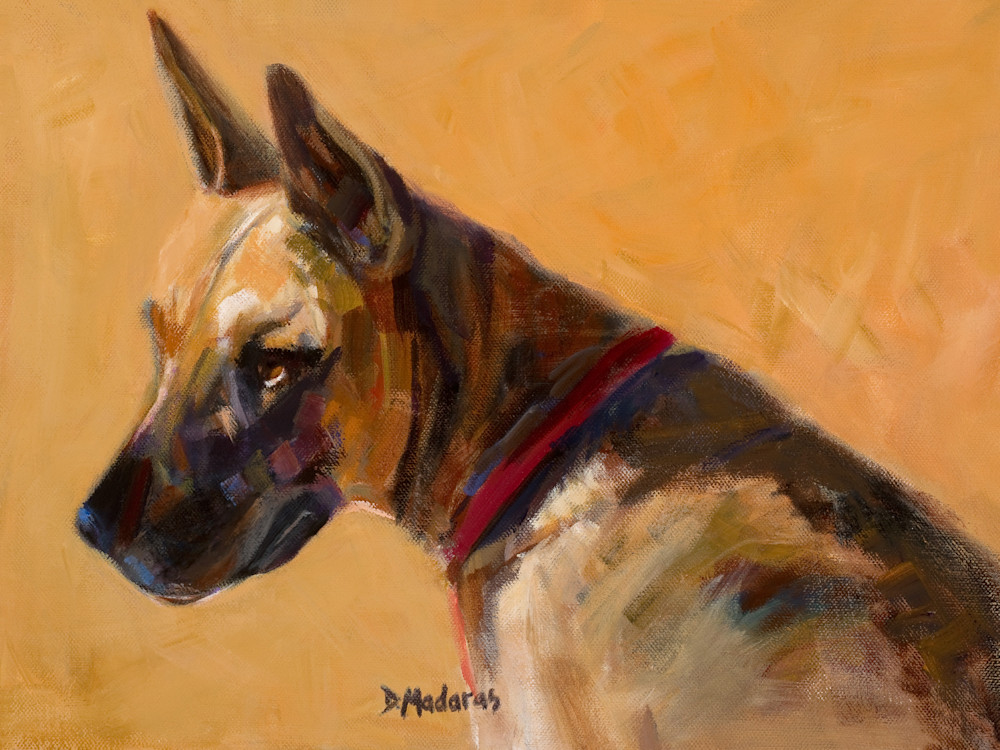 Watchdog | Southwest Art Gallery Tuson | Diana Madaras