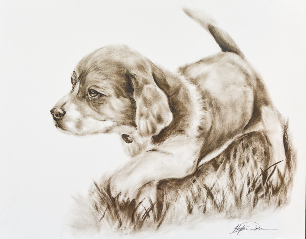 """Bailey"" Dry Brush Oil Painting"