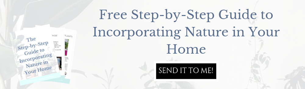 free downloadable Step by Step Guide to Incorporating Nature in Your Home