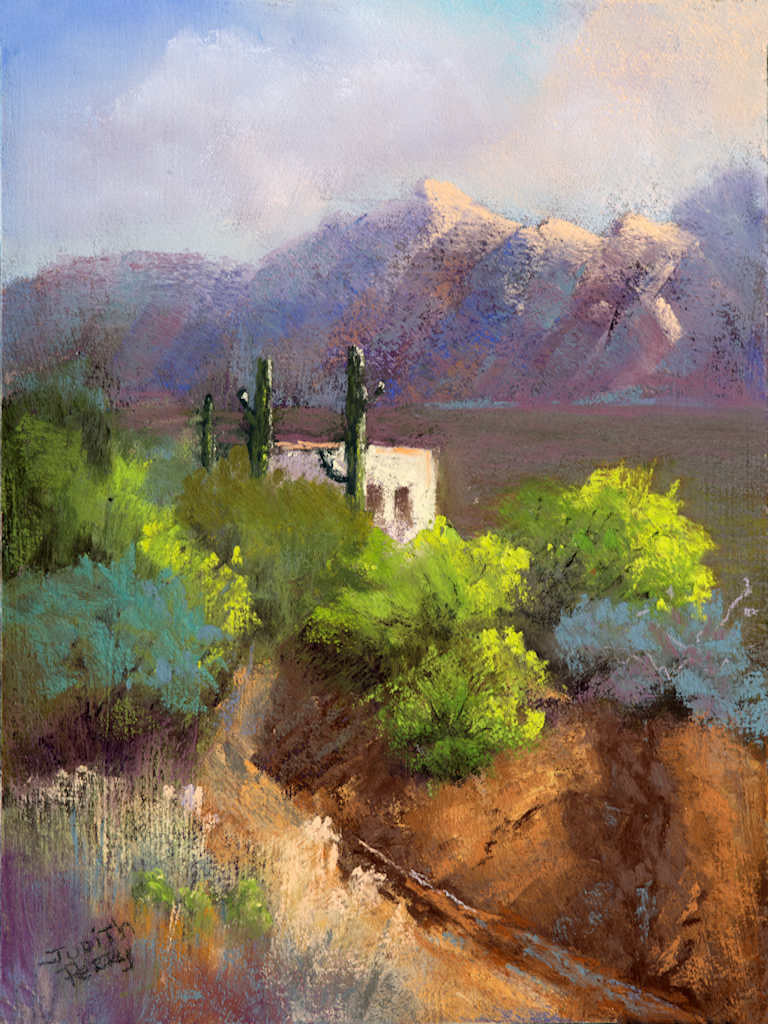"Tucson Arroyo"" is very special to me!  Years ago I lived in Tucson and always loved the desert life.  In 2016 PACE (Plein Air Convention) held their annual outdoor painter's convention in Tucson. I had the good fortune to be able to go with a good friend to the event and enjoy the desert and meet all the great painters of the day.  The backdrop to the convention center was this lovely image of the Catalina Mountains and the dotted landscape of saguaros and adobes! The time of year was April, the desert was alive with greenery and the evidence of winter and spring rains still visible in the ""almost"" dry washes.  I painted ""Tucson Arroyo"" with both the long ago, and new made memories from my recent return.  I hope to go back soon to paint more of this exciting and varied landscape.  ""Tucson Arroyo"" is painted in the wonderful medium I love of ""soft pastels"", a medium that has withstood the rigors of time for centuries. You can see more about soft pastels in my online art gallery in ""Frequently Asked Questions""."