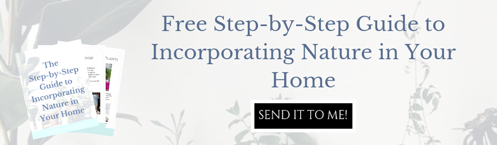 The free Step-by-Step Guide to Incorporating Nature into Your Home