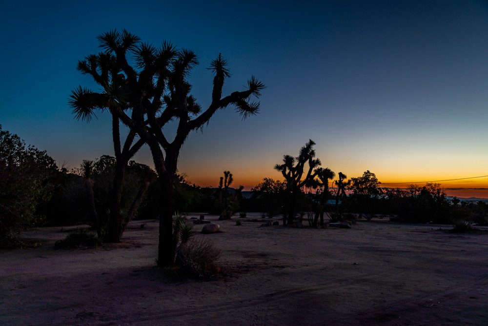 Sunrise over the desert in Joshua Tree, CA