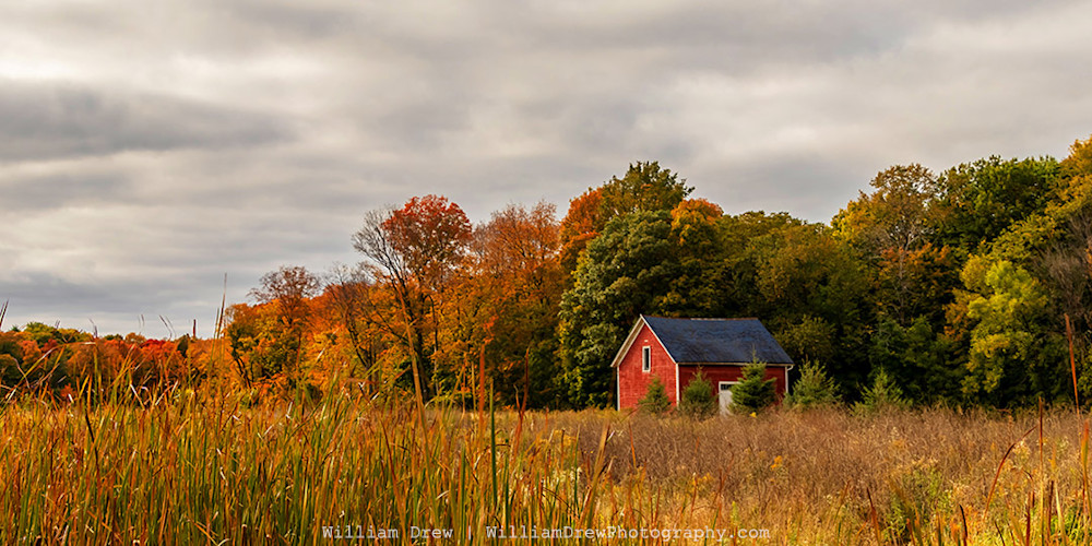 Shop 'Henry's Woods' - a Fall Color Photography print created by William Drew Photography.