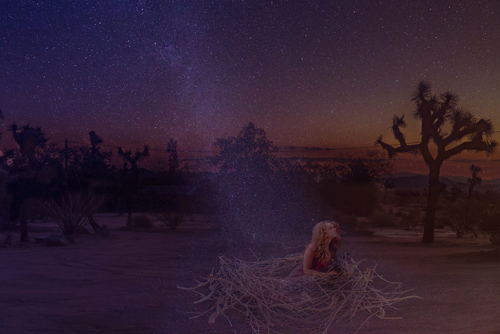 A composite photo of a beautiful young girl in a bird's nest surrounded by stars