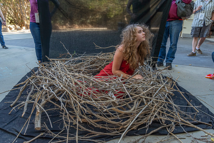 Ayvarie in a human-size bird's nest