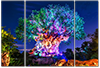Awakenings 3 - Disney Art for Sale | William Drew Photography