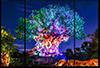 Awakenings 3 - Disney Art for Sale | William Drew Photography