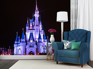 Cinderella White - Disney Wall Murals | William Drew Photography