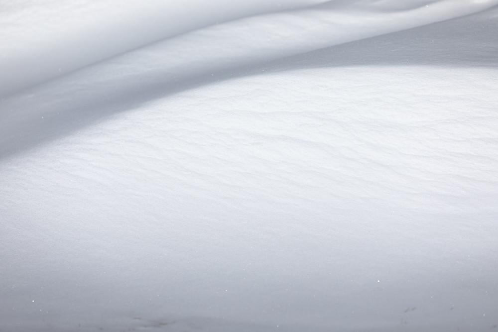 Gentle light on contoured snow