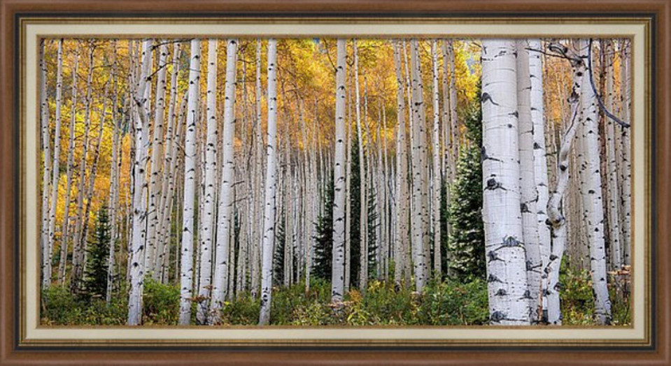 Thom Schoellers Acrylic print format provides a float mounted or framed experience