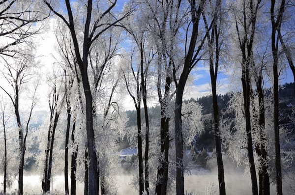 Frosty Morning.Jpg Photography Art | Swan Valley Photo