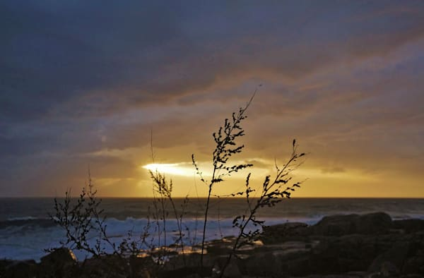 Backshore Sunrise Art | capeanngiclee