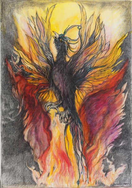 Bird On Fire Art | capeanngiclee