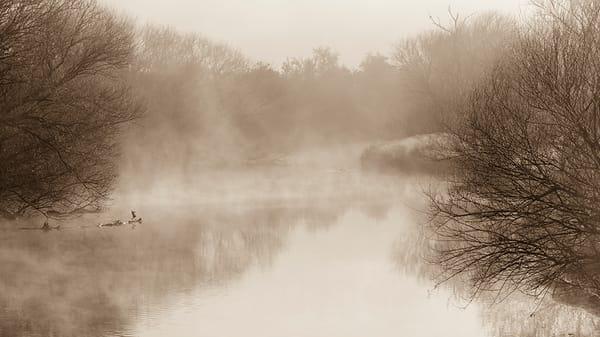Mist water scene