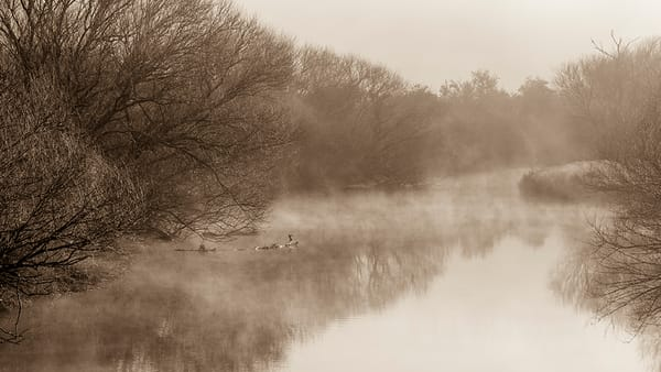 water scene with mist at daybreak