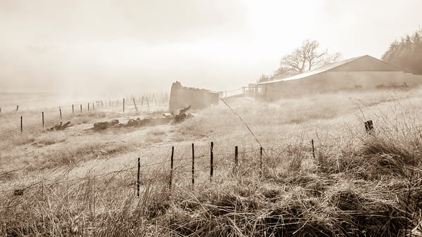 Misty farm buildings