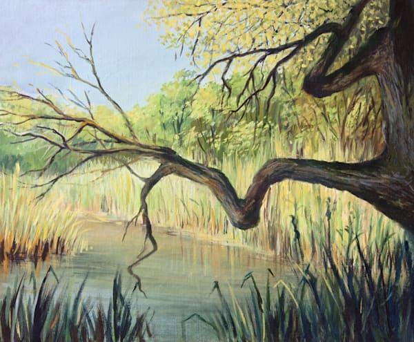 The Lake of Silence