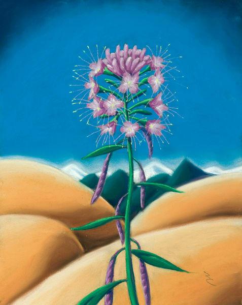 Flower/Plant Series