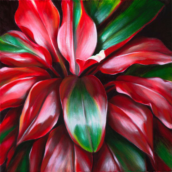Fine Art | Red Green Ti Leaves 2 by Philip Sabado