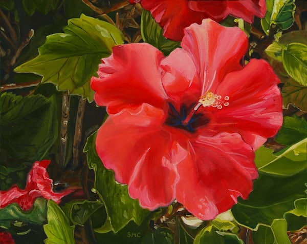 Nature Art | Red Hibiscus by Carlisle