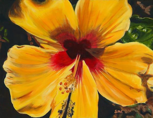 Nature Art   Yellow Hibiscus by Carlisle