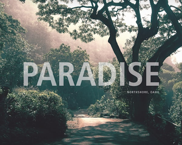 Lifestyle Prints | Paradise, Hawaii