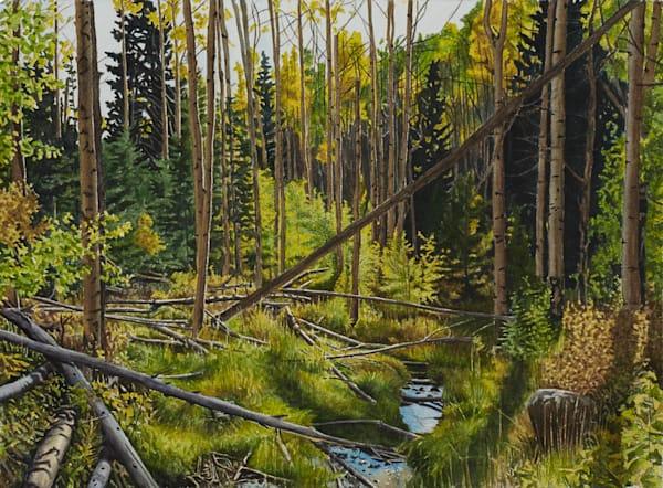 Tesuque Creek,watercolor, landscape, watercolor landscape, Southwest, New Mexico, Aspens
