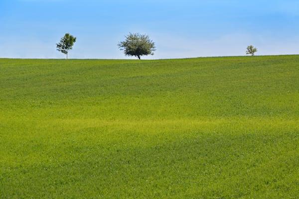 Landscape Photographic Art - Triplets