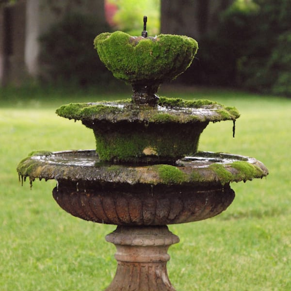 """""""Fountains of Wisdom"""""""