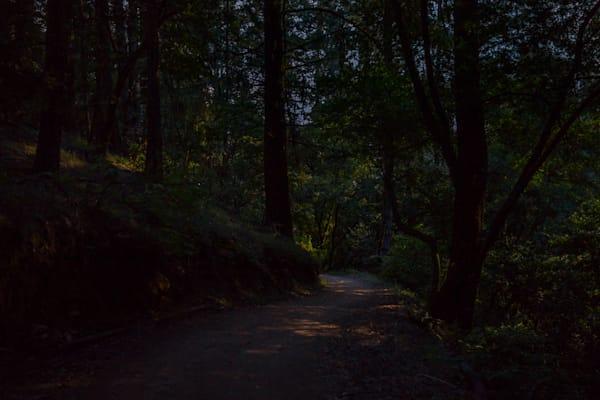 Mt. Tamalpais, Photography, Marin County, nocturne, landscape
