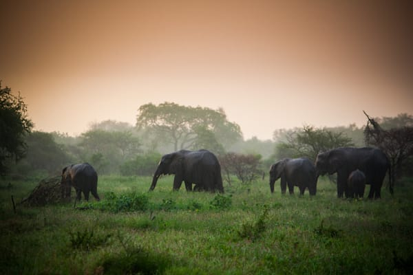 Photography - Africa