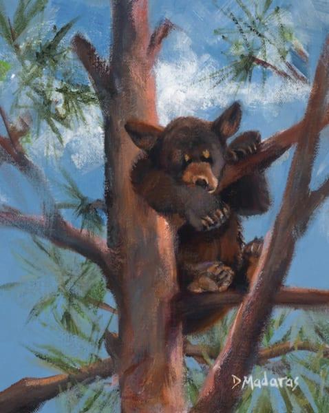 Bear Cub   Southwest Art Gallery Tucson   Madaras