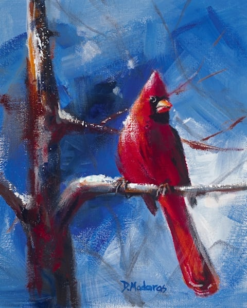 Cardinal in Winter   Southwest Art Gallery Tucson   Madaras