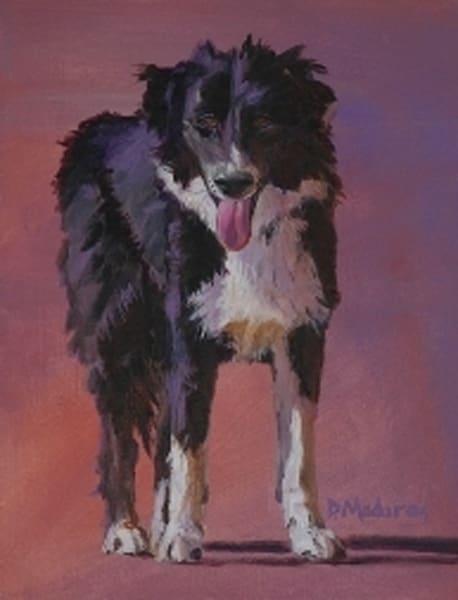 Cowboy Dog   Southwest Art Gallery Tucson   Madaras