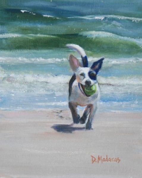Dog on the Beach   Southwest Art Gallery Tucson   Madaras