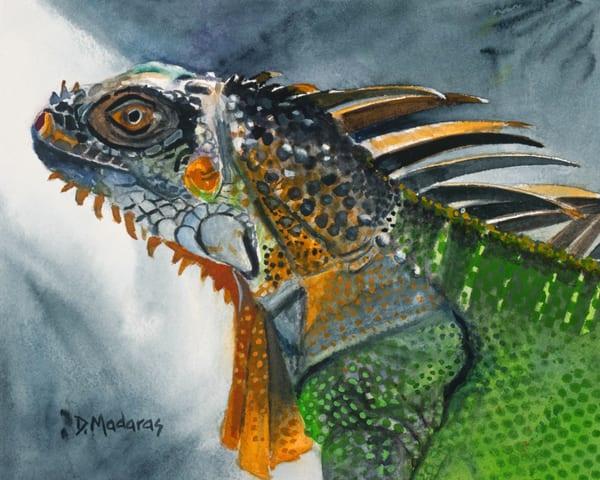 Iguana   Southwest Art Gallery Tucson   Madaras