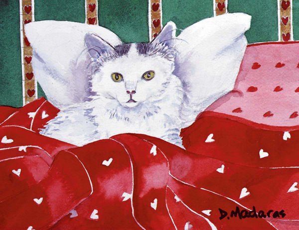 Kitty Angel   Southwest Art Gallery Tucson   Madaras