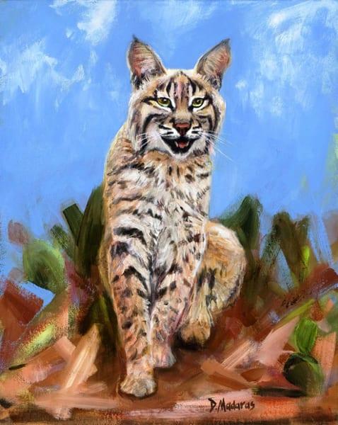 Wildcat | Southwest Art Gallery Tucson | Madaras