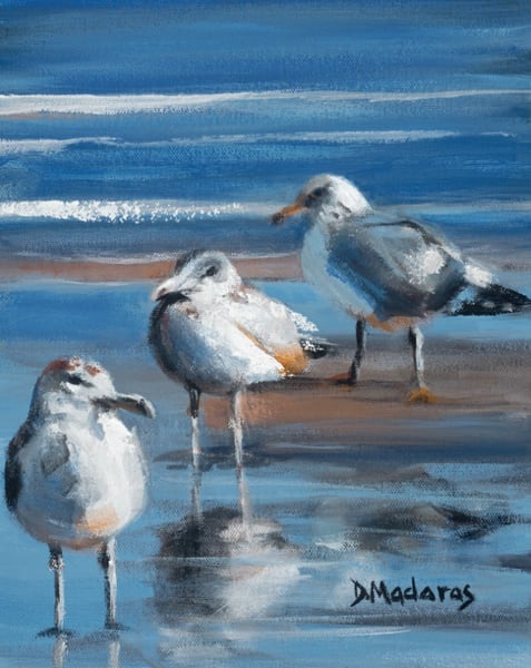 Seagulls in New Jersey | Southwest Art Gallery Tucson