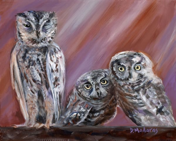 Owl Family | Southwest Art Gallery Tucson | Madaras