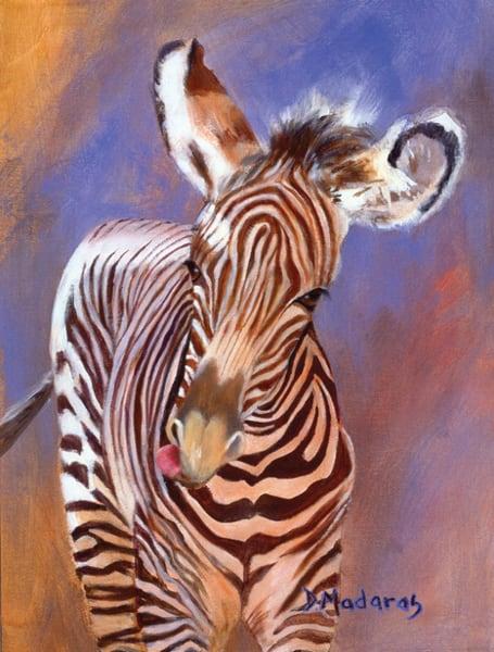 Baby Zebra | Southwest Art Gallery Tucson | Madaras