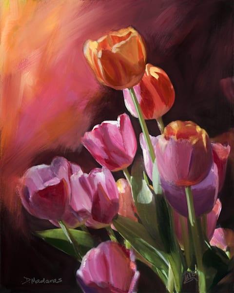 Tulips at Sunset | Southwest Art Gallery Tucson | Madaras